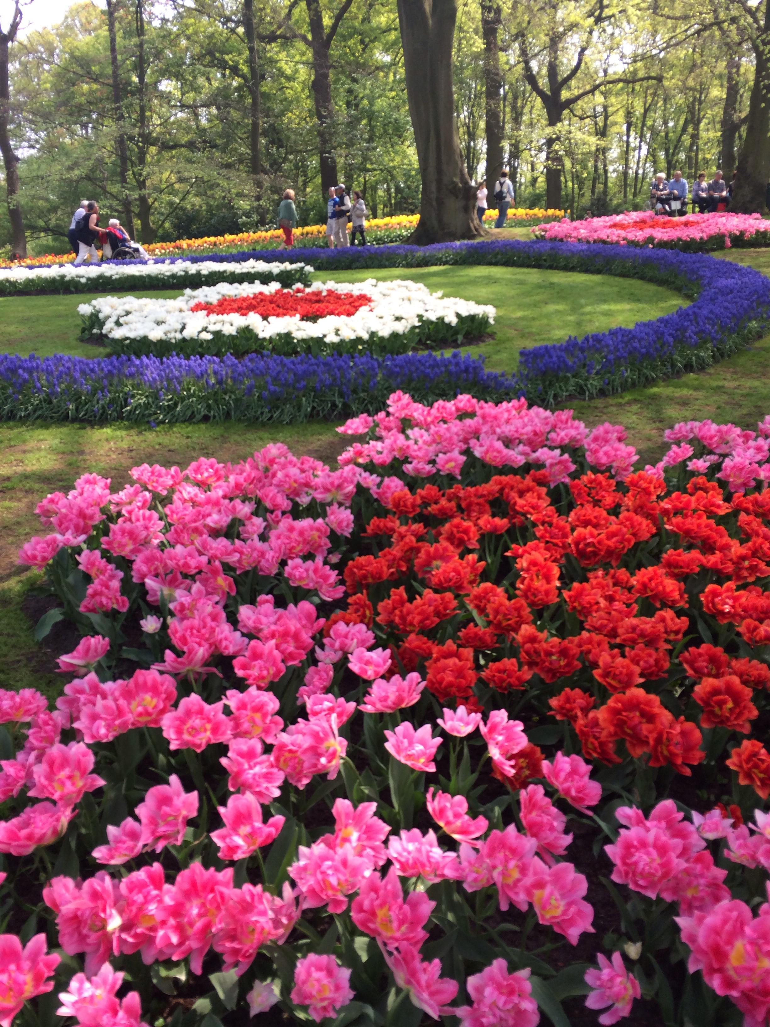 botanische tuin new york