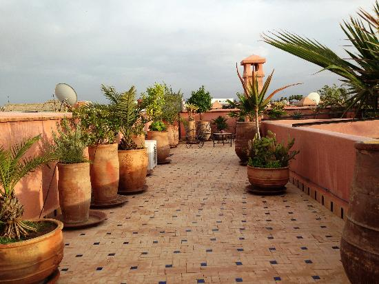 roof-terrace-2
