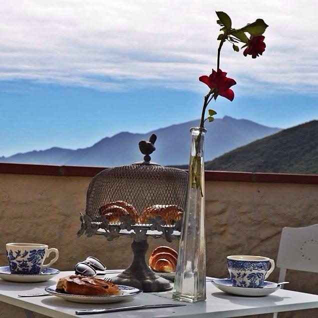 Breakfast at Tiffa…Abi's